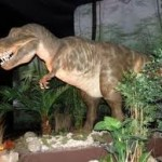 Köstebekgiller Jurassic Land'da resimleri