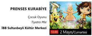 Prenses Kurabiye Tiyatro Oyunu Ücretsiz afiş