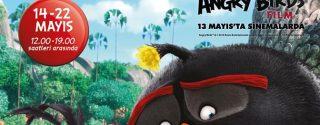 Angry Birds Kuşları Torium'da afiş