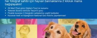 Sokak Hayvanları İçin Marmara Forum'da Buluşalım afiş