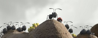 Kayıp Karıncalar Vadisi afiş