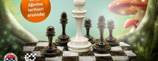 Maltepe Park Satranç Turnuvası afiş