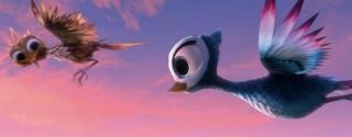 Minik Kuş 2014 Sinema afiş