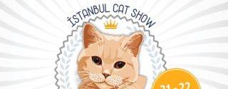 İstanbul Cat Show afiş
