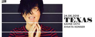 Texas Konseri afiş