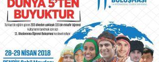 Uluslararası  Öğrenci Buluşması afiş