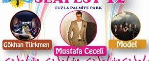 Seafest'12 Gökhan Türkmen afiş