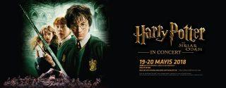 Harry Potter ve Sırlar Odası afiş