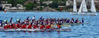 Haliç Su Sporları Festivali afiş