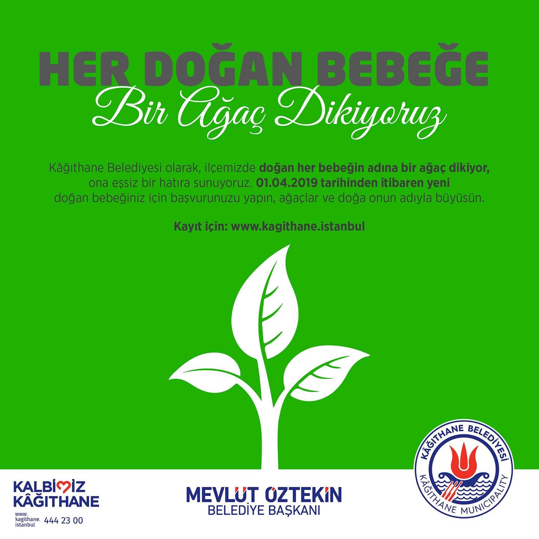 Kağıthane Belediyesi Her Doğan Bebeğe Bir Ağaç Dikiyor!